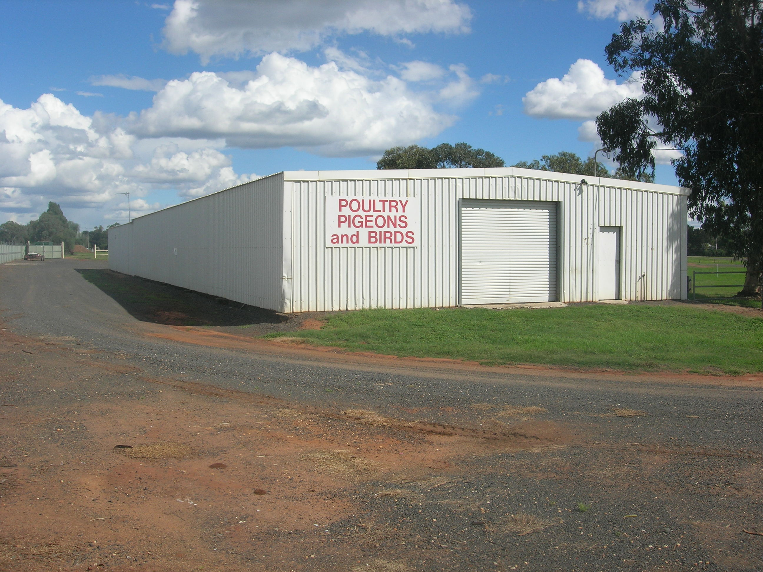 Dubbo Poultry Club Shed